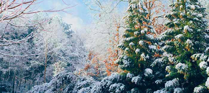 winter is a wonderful time to enjoy shopping, dining, and the wonderful sights in Yardley, Bucks County PA